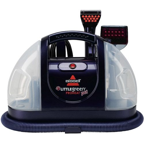 Home How to clean carpet, Mattress cleaning, Pets for sale