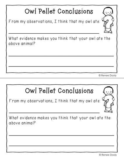 owl pellet dissection worksheet worksheets releaseboard free printable worksheets and activities. Black Bedroom Furniture Sets. Home Design Ideas