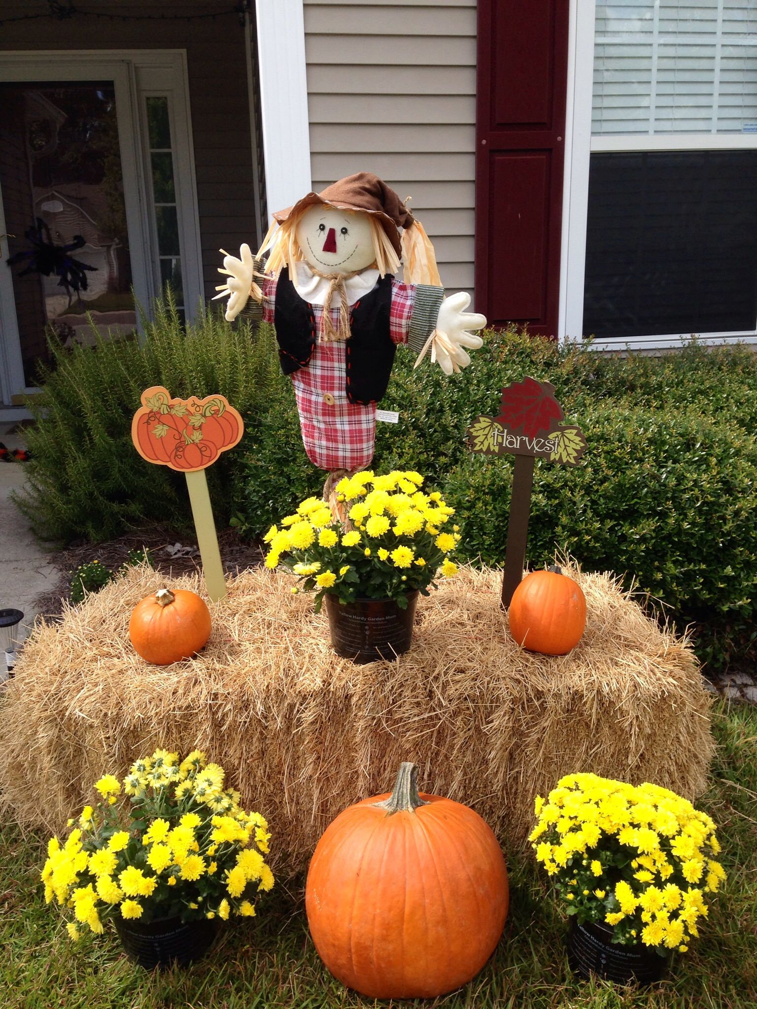 My Fall Yard Decor Yellow Mums Pumpkins Hay Bale And A Cute Little Scarecrow