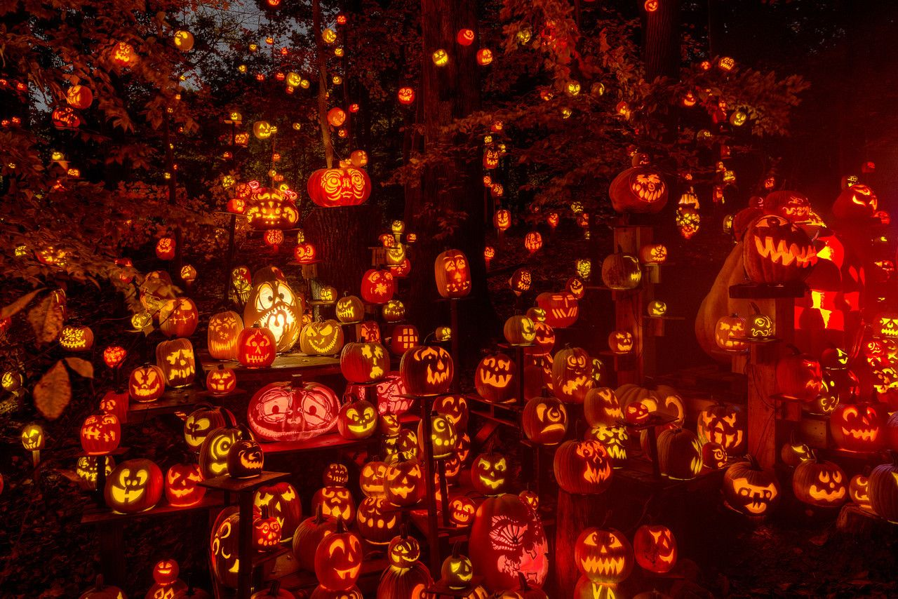 tons of jack o lanterns jack o lantern spectacular louisville ky - Halloween Events In Louisville Ky