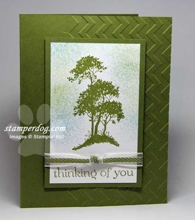 Almost Monochromatic - Stampin' Up! Demonstrator Ann M. Clemmer & Stamper Dog Card Ideas