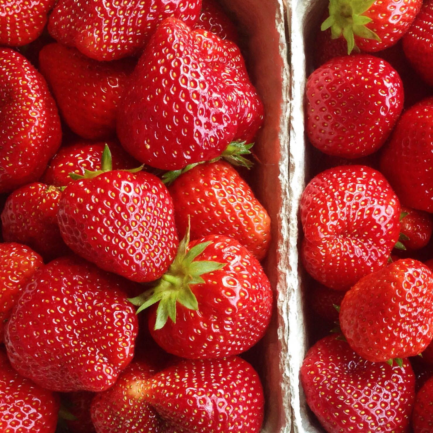 Raw Til 4 Meal Plan Raw food detox, Vegan meal plans