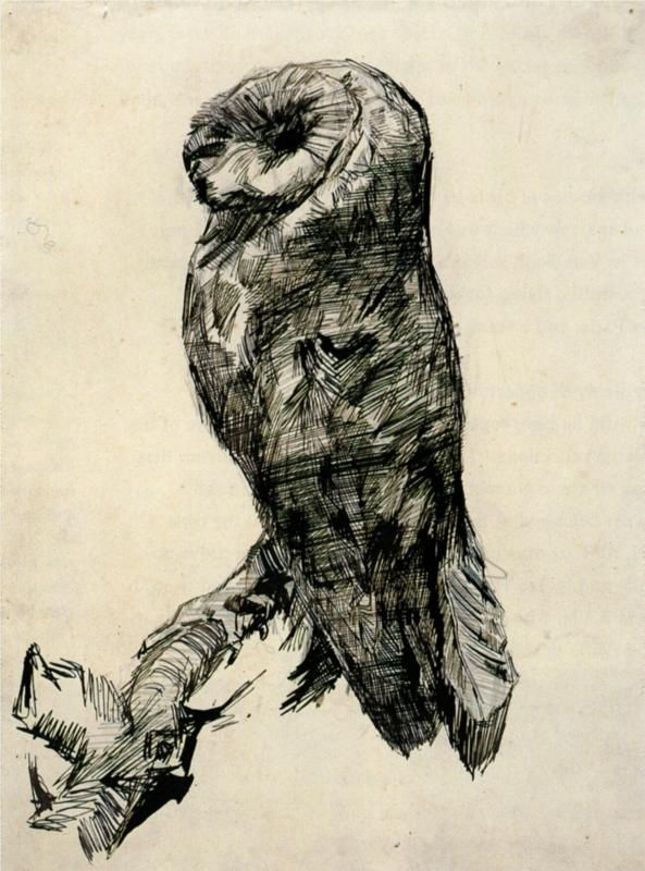 Vincent van Gogh ~ Barn Owl Viewed from the Side, 1887 (pencil, pen, blue ink)