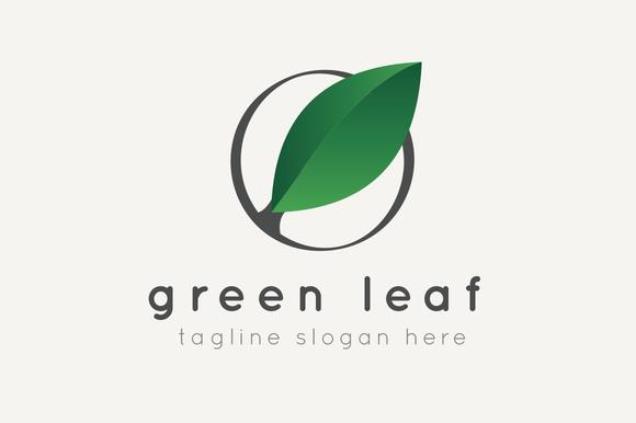 Green Leaf Logo Green Logo Design Leaf Logo Tea Logo