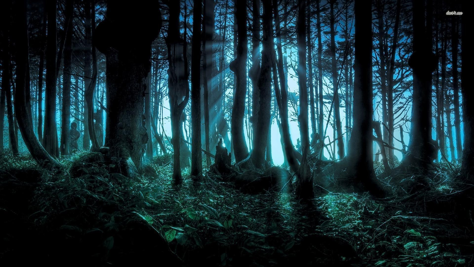 Beautiful Creepy Tree Wallpaper Forest wallpaper, Forest