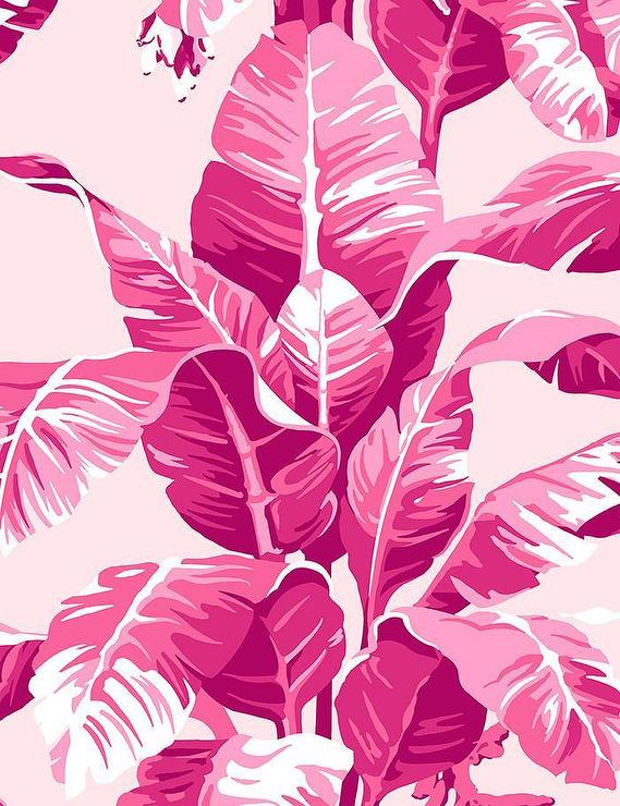 Pink Banana Leaf Wallpaper Google Search In 2020 Palm Wallpaper Tropical Wallpaper Pink Wallpaper Iphone