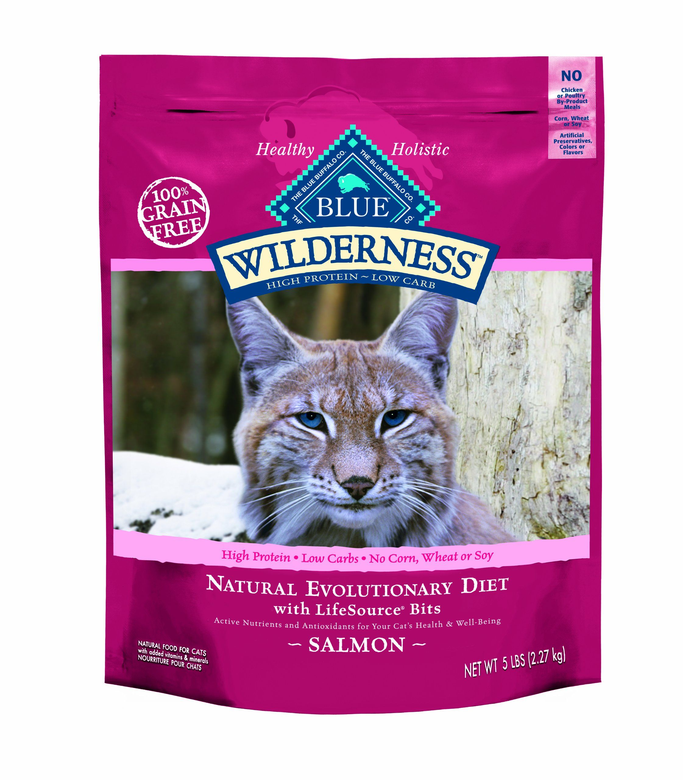 Blue Buffalo Wilderness Grain Free Dry Cat Food Salmon Recipe 11 Pound Bag Cat Food Dry Cat Food Free Cat Food