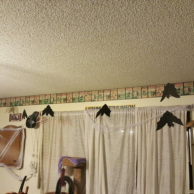 DIY halloween bats. Cut black paper hang from fishing line and on ceiling  fan blades