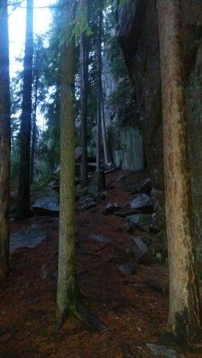 Halsvuori. Metsä. Kallio.