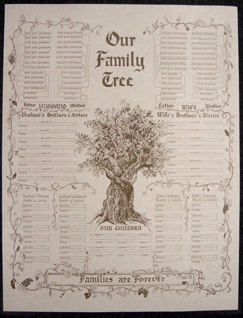 23 u0026quot  x 30 u0026quot  family tree chart