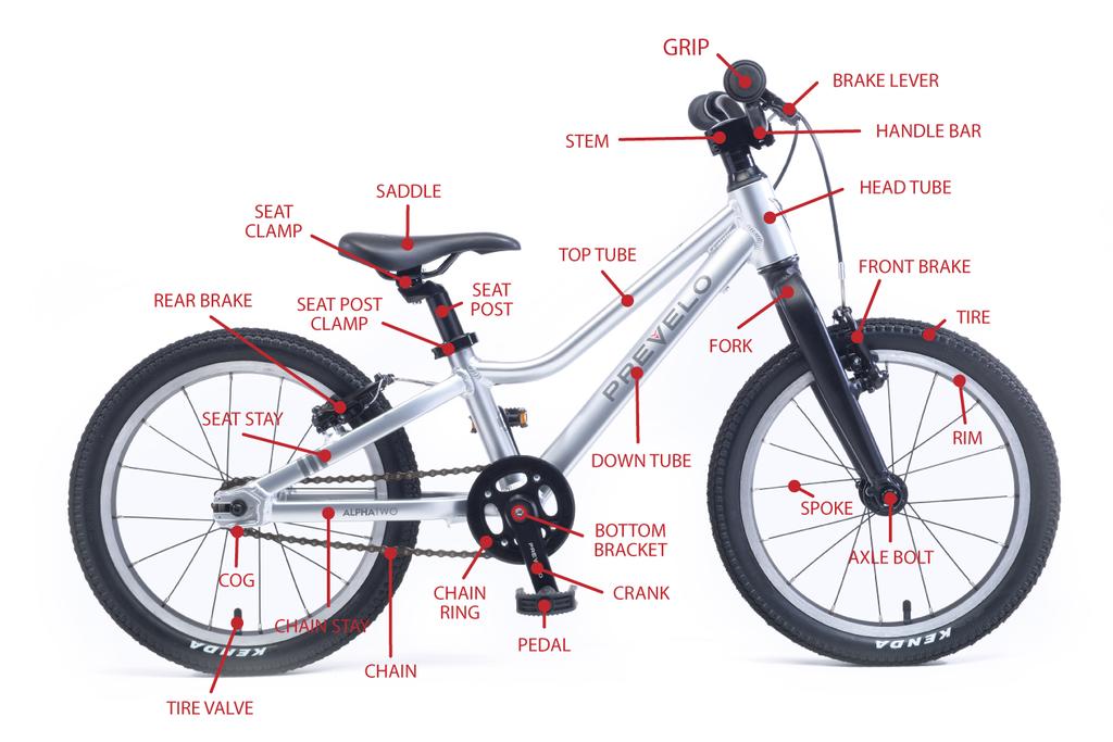 Kid S Bike Parts The Anatomy Of A Kid S Bike Kids Bike Bike