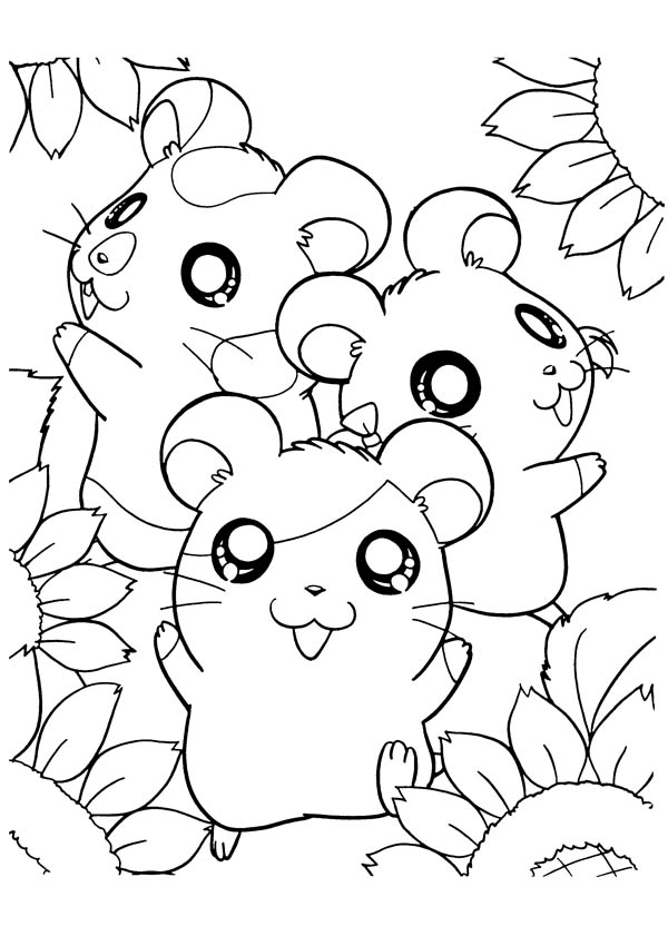 How To Draw Hamtaro Coloring Pages Bulk Color Cute Coloring Pages Sunflower Coloring Pages Coloring Pages