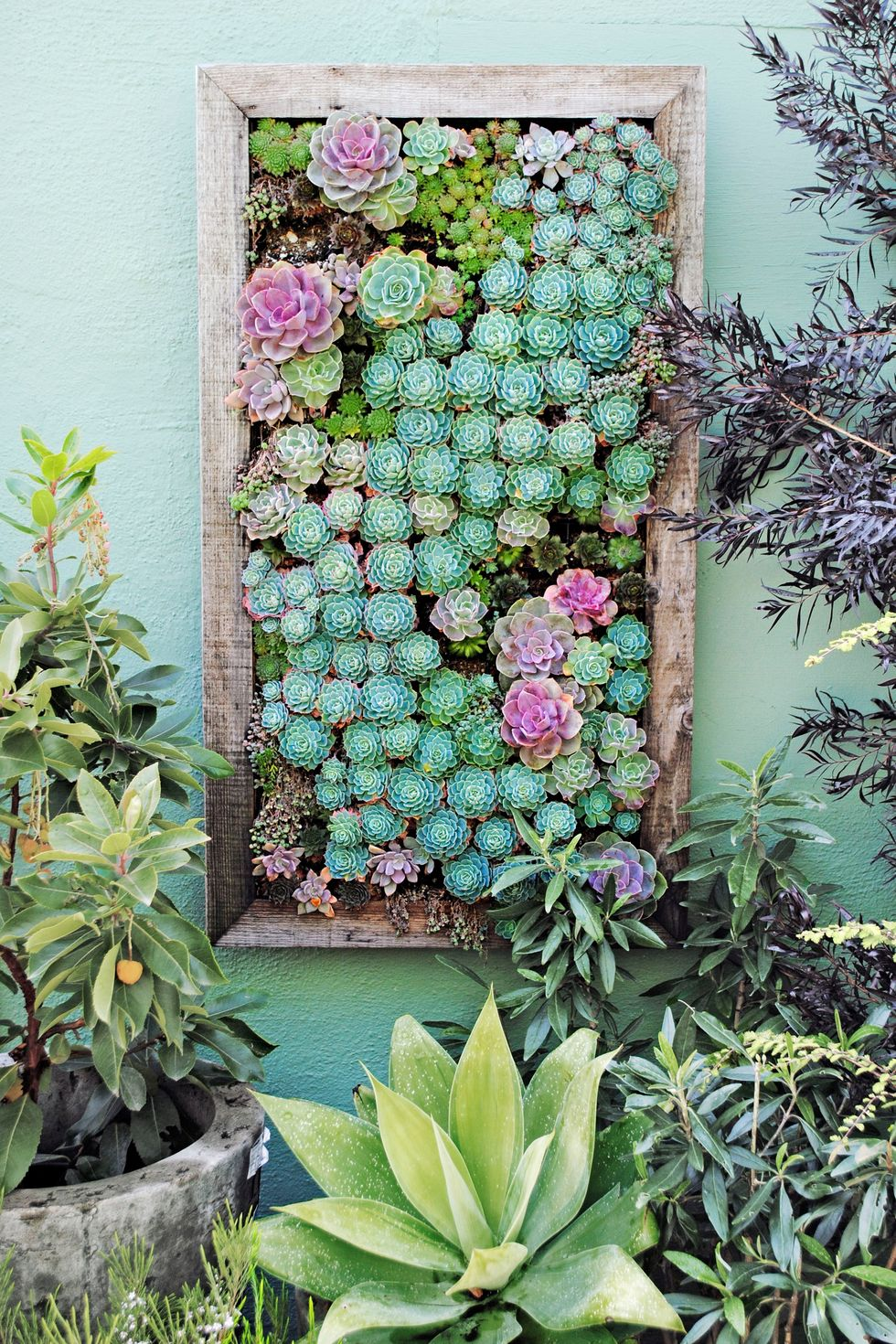 These Vertical Garden Ideas Are Perfect for Small Spaces is part of Vertical garden indoor, Vertical garden diy, Succulent wall garden, Vertical succulent gardens, Vertical planting, Vertical garden design - Although these planters look like a tall order, they're actually incredibly easy to make
