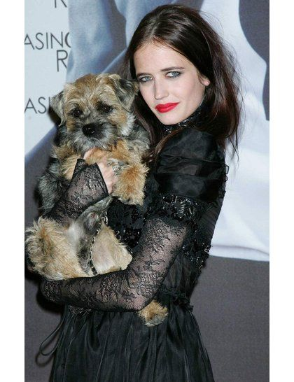 Puppy Love Celebrities Their Dogs Eva Green Celebrity Dogs