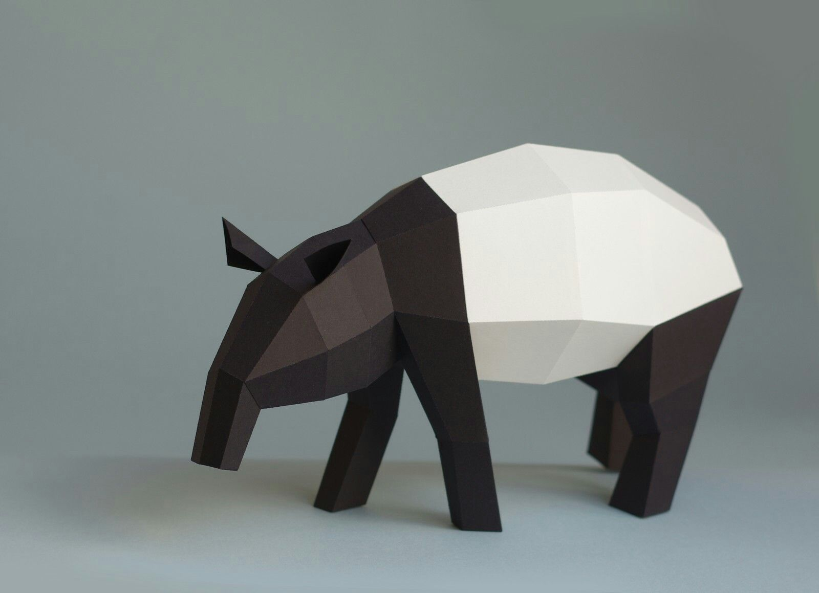 Original paperwolf tapir paperwolf pinterest diy artwork paper trophy and paper craft creations by paperwolf the most realistic paper craft animal diy artwork jeuxipadfo Image collections
