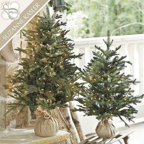 Frasier Fir Tabletop Christmas Tree Ballard Designs Tabletop Christmas Tree Christmas Tree Decorations Winter Barn Weddings
