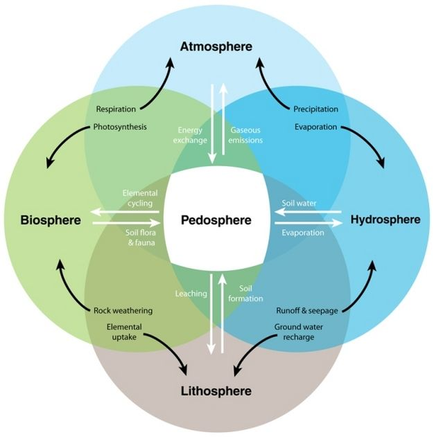 Outline how processes in the atmosphere, hydrosphere, and lithosphere interact to create Earth's biosphere?