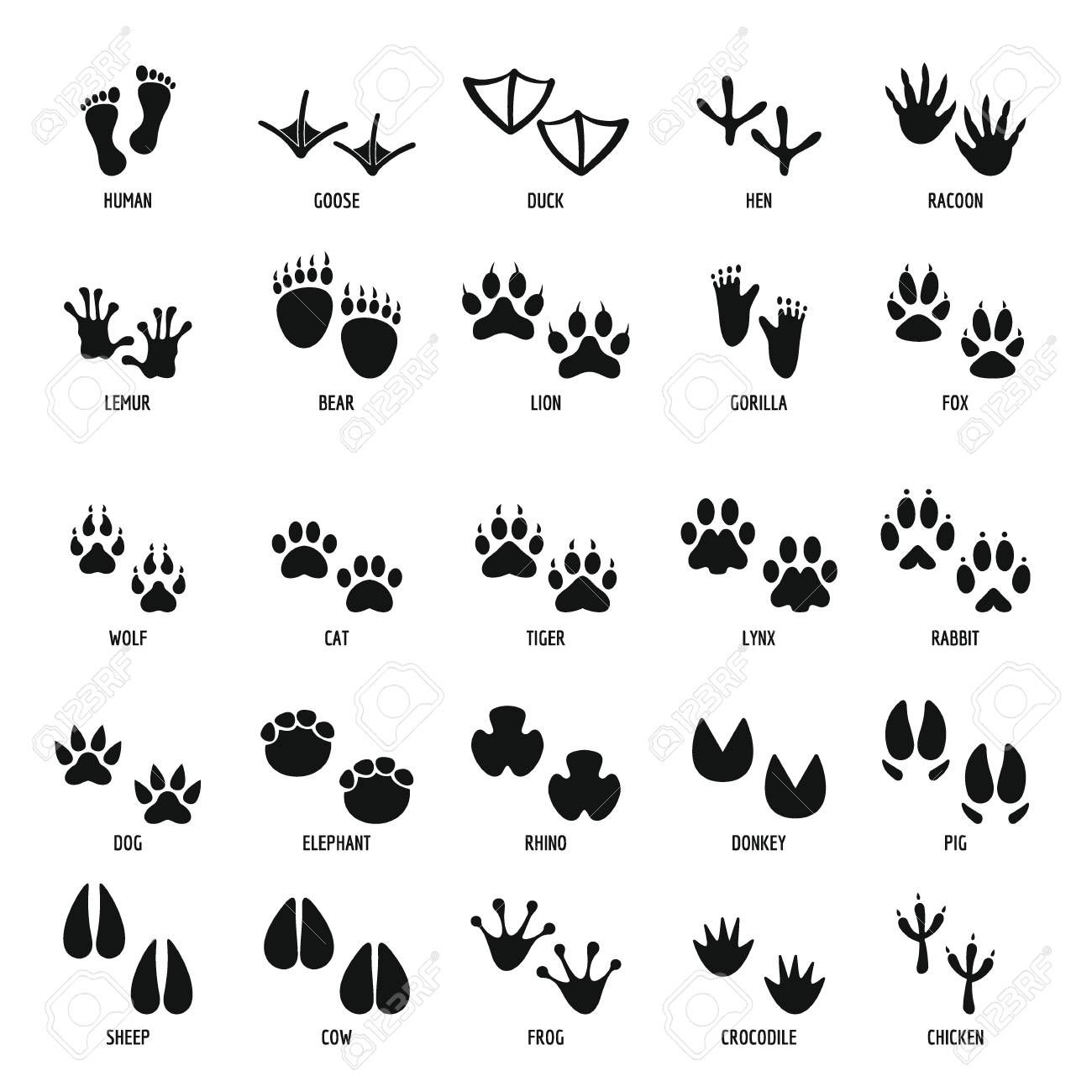 Animal Footprint Icons Set Simple Style Royalty Free Cliparts Vectors And Stock Illustration Image 90869178 Animal Footprints Animal Icon Animal Doodles