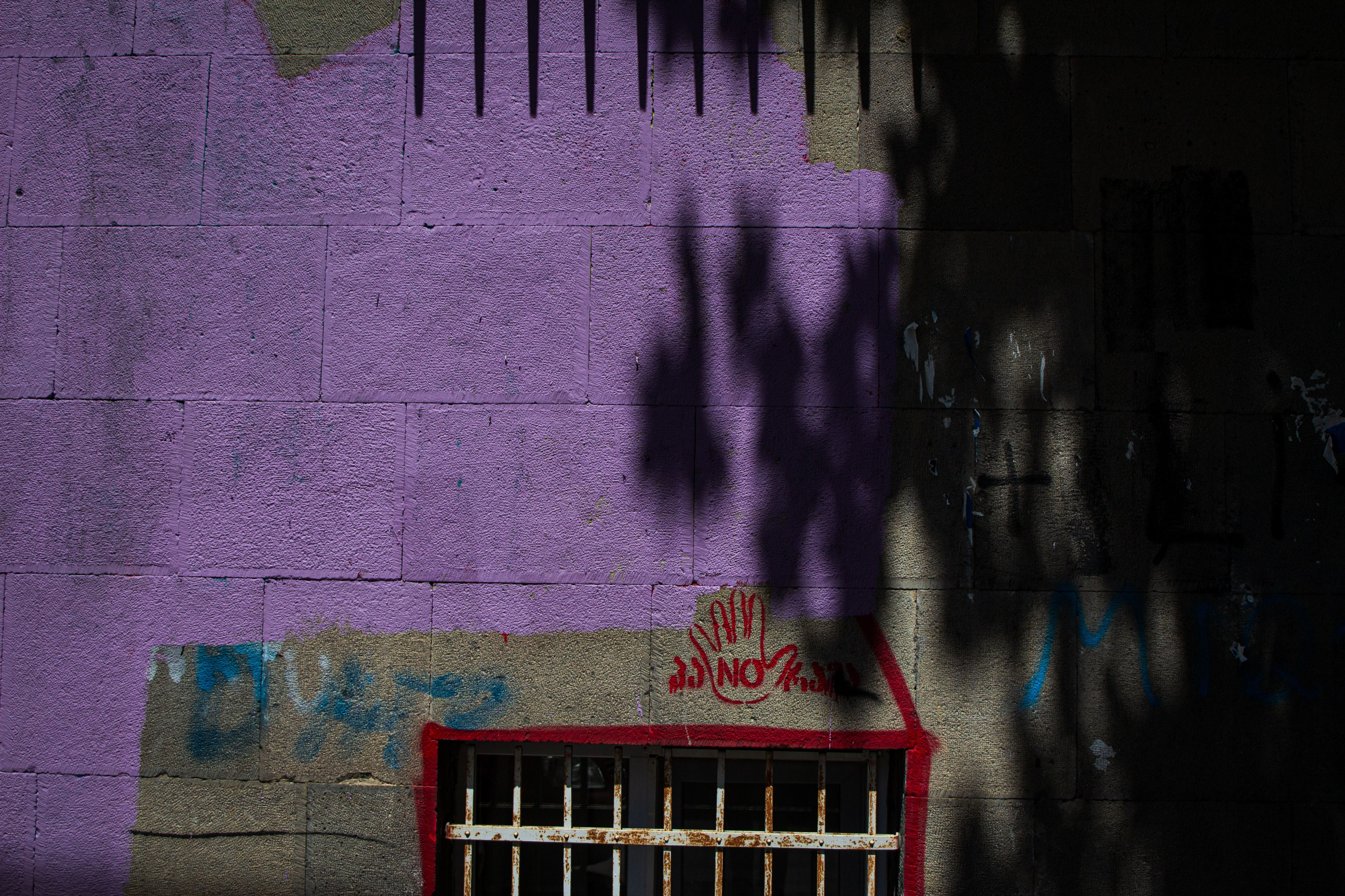 Wall Art Home Decor Grey Cement Grey Cement Wall With Purple Paint Graffiti Floral Shadows Purple Paint Graffiti Painting