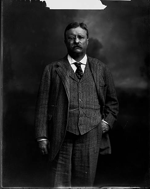 World S Best Theodore Roosevelt Portrait Stock Pictures Photos And Images Getty Images Portrait Portrait Photo Theodore