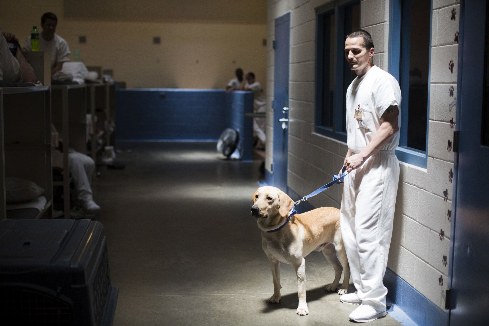 With Help From Prison Inmates Researchers At Auburn University