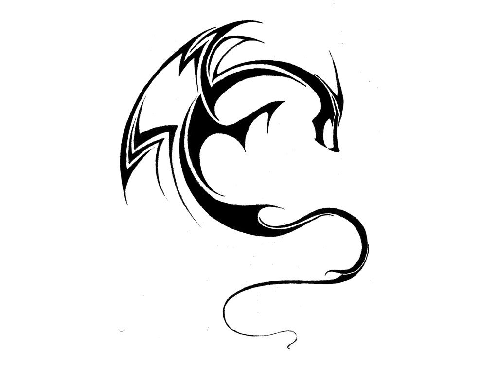 Simple Dragon With Curved Body Tattoo Drawing Jpg 1 024 768 Pixels Dragon Tattoo Designs Small Dragon Tattoos Dragon Drawing