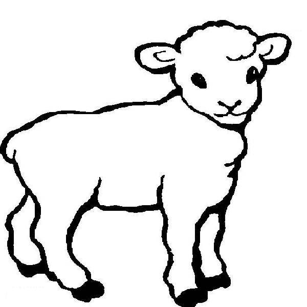 Cool Coloring Pages Easter lamb no 1 coloring page - Cool Coloring ... | 600x600