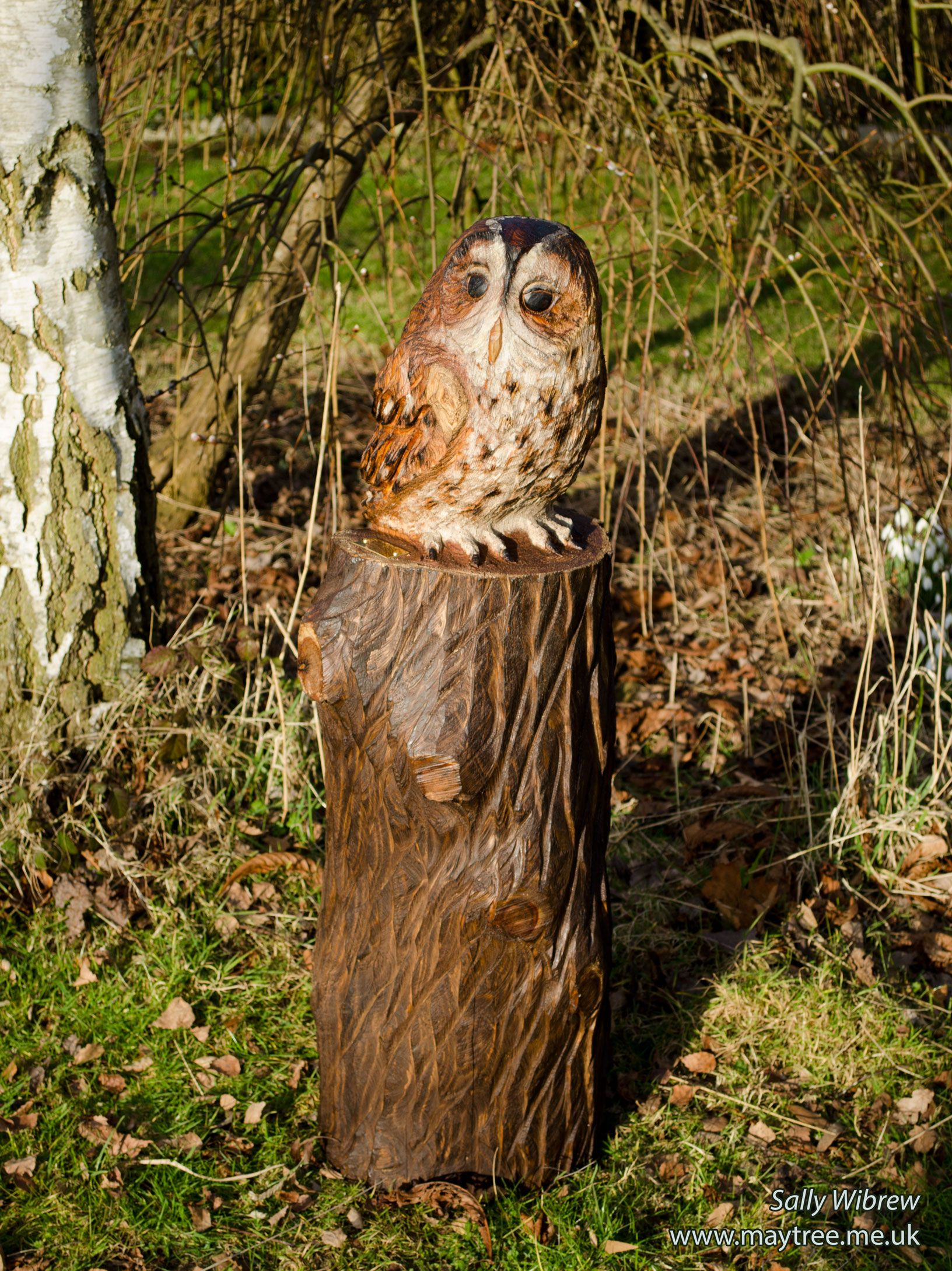 A large tawny owl sculpture basking in the Spring sunshine ...