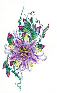 Passion Flower Tattoo Google Search Flower Sketches Flower Drawing Flower Art