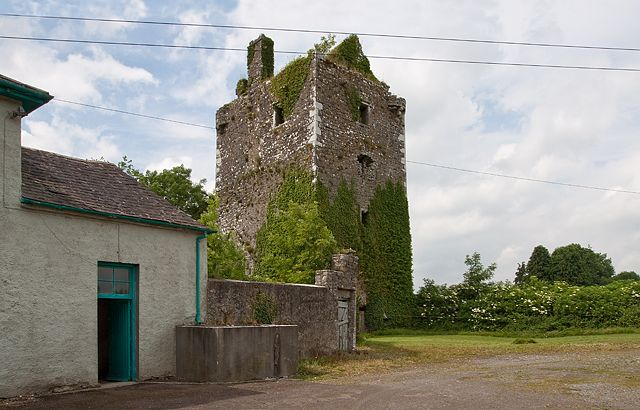 Castles of Munster: Milltown St John, Tipperary by Mike Searle - near to Coolbaun Cross Roads, Kilkenny, Ireland