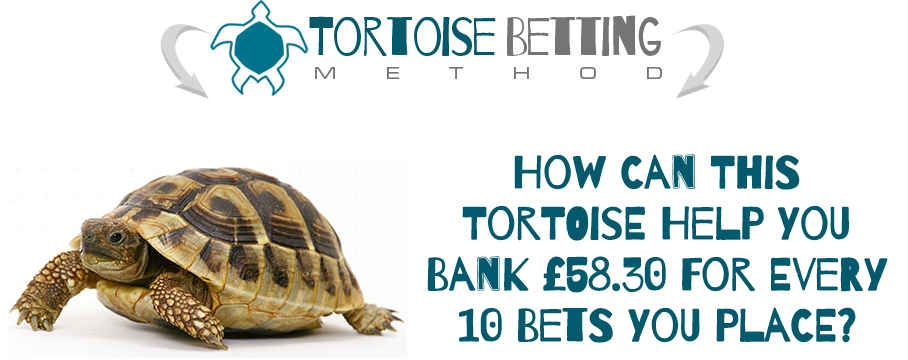 Tortoise Betting Method Review - Is It Scam? Truth Exposed ...