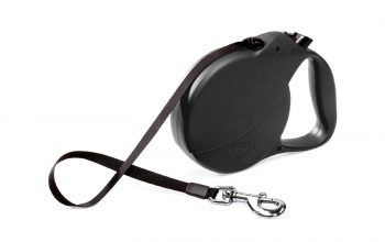 Top 12 Best Retractable Dog Leash Reviews (Buyer's Guide