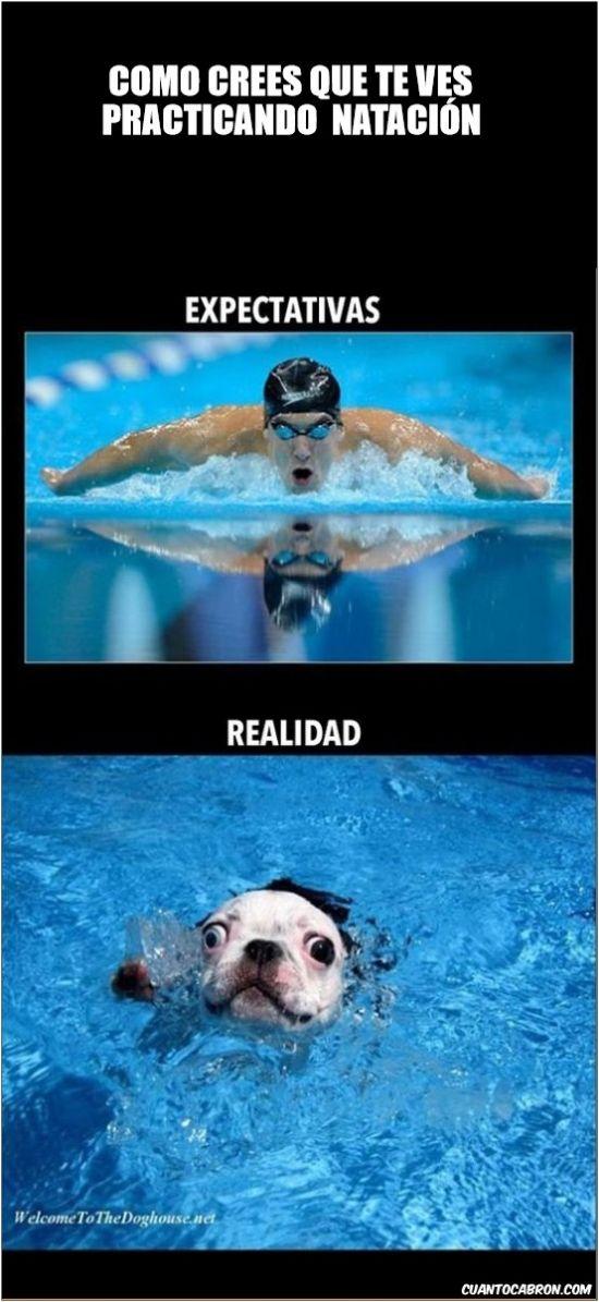Como te ves cuando nadas        Gracias a http://www.cuantocabron.com/   Si quieres leer la noticia completa visita: http://www.estoy-aburrido.com/como-te-ves-cuando-nadas/