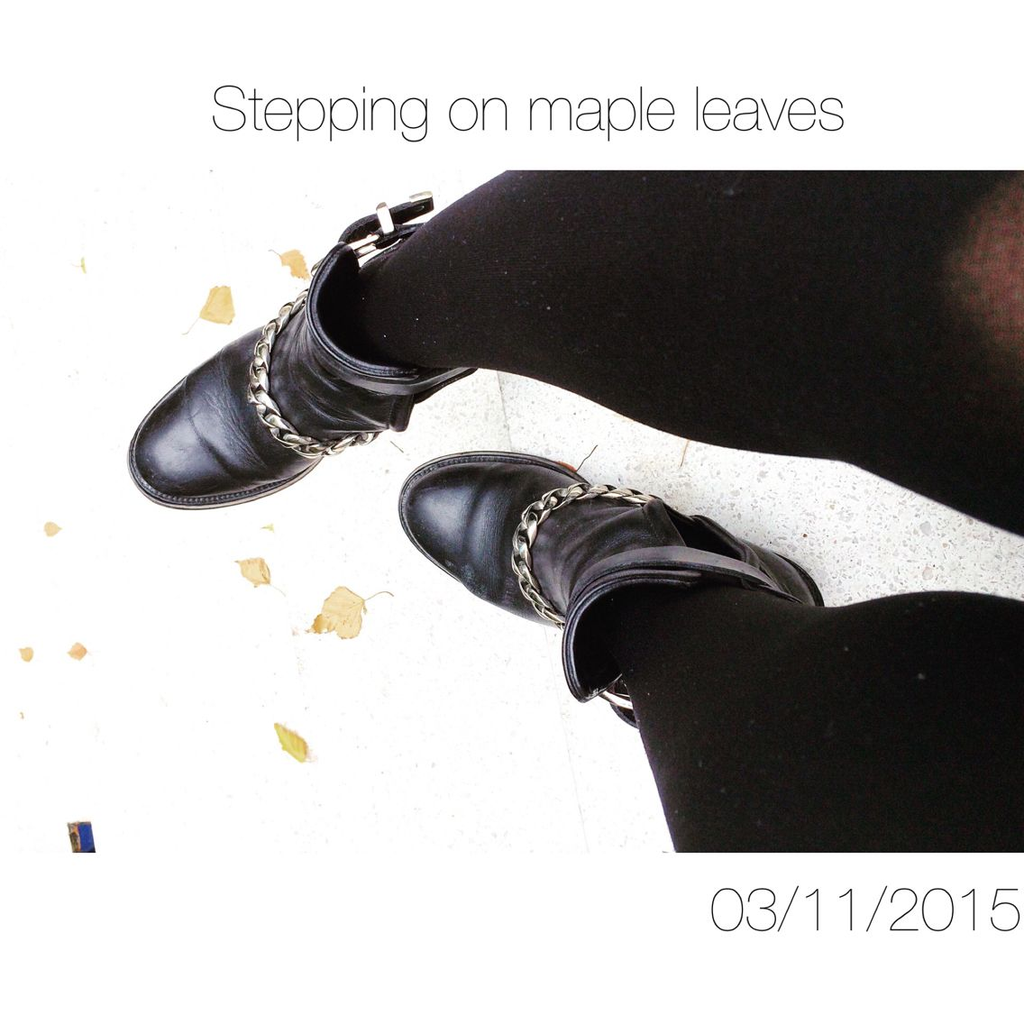 Stepping on maple leaves