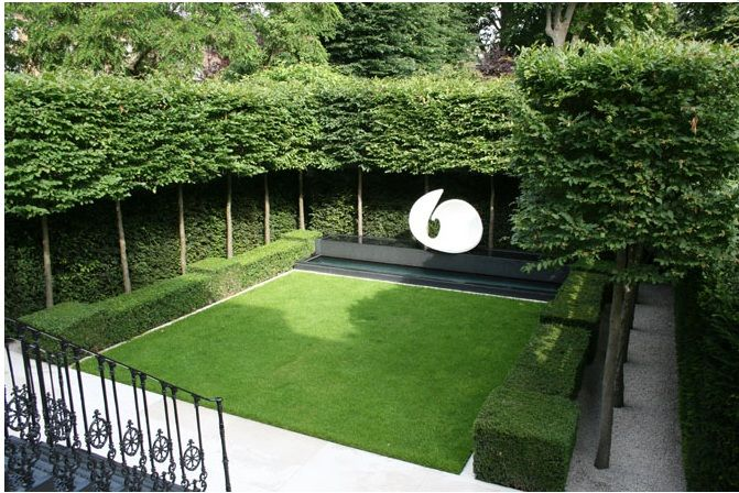 Pleached Trees Lawn Hedging Making A Space All Of Your Own Outdoor Landscaping Garden Hedges Small Garden Design