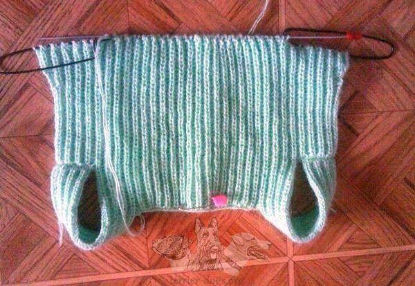 вязание для собак штанишки одежда для собачек одежда для собак