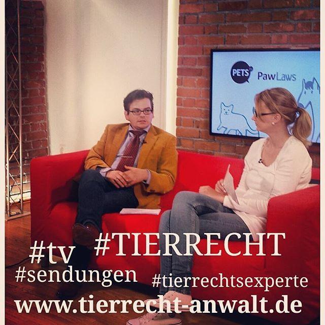 Instagram Photo By Rechtsanwalt Ackenheil Jul 10 2016 At 11 01am Utc Tierrecht Hund Und Katze Tierarzt