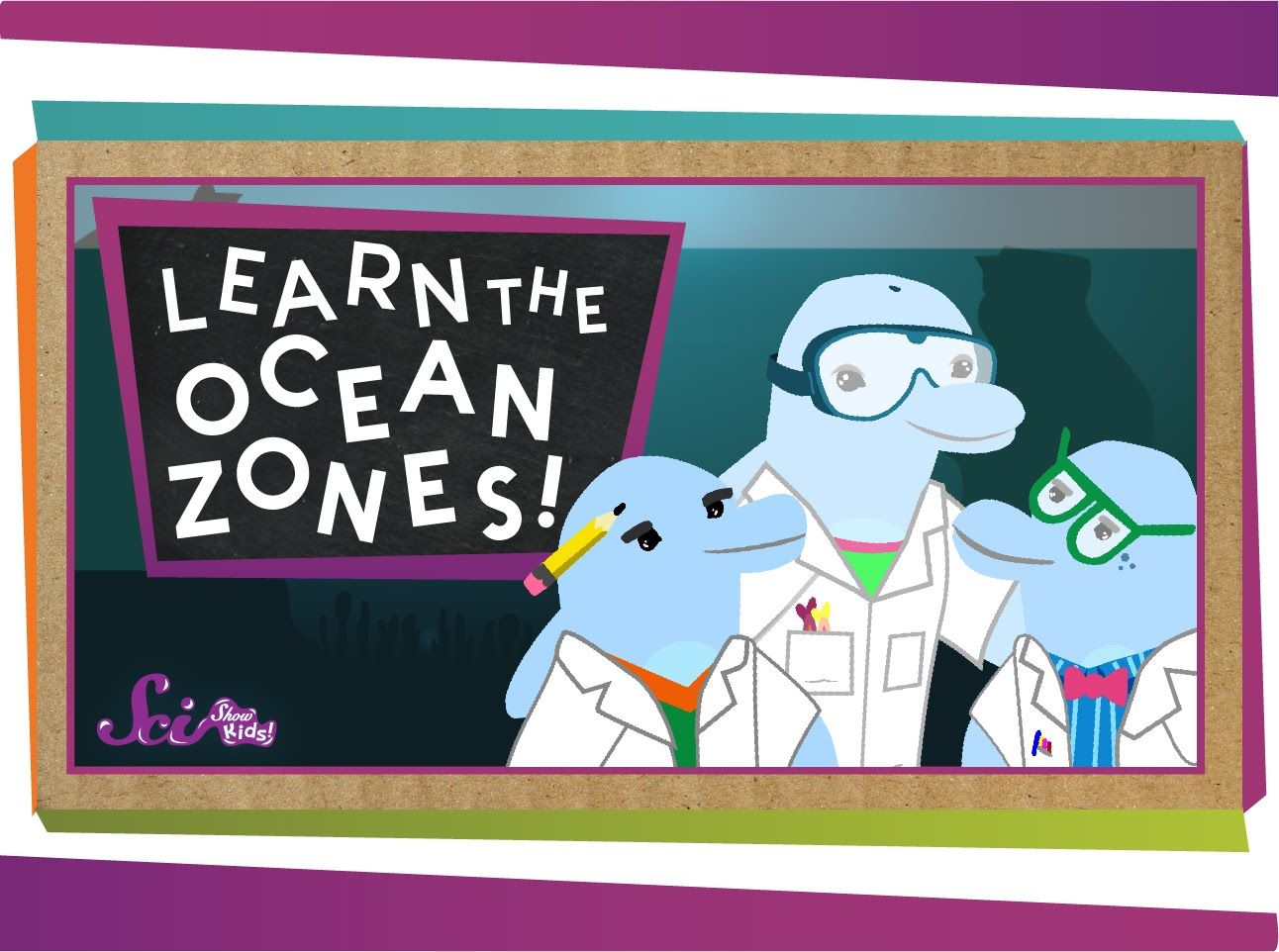 Marine Life Zones Worksheet