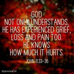 Day 6 scripture of loss  John 11:33-36.  Trust in the Lord