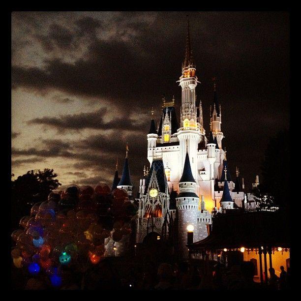 Cool Castle Pic Magic Kingdom Walt Disney World