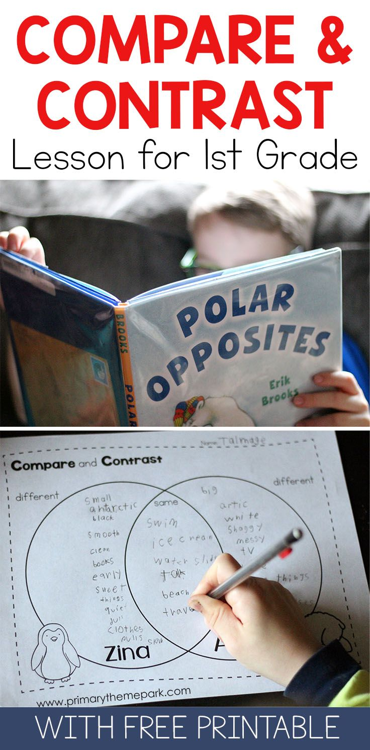 Compare and Contrast for First Grade | Pinterest | Polar animals ...