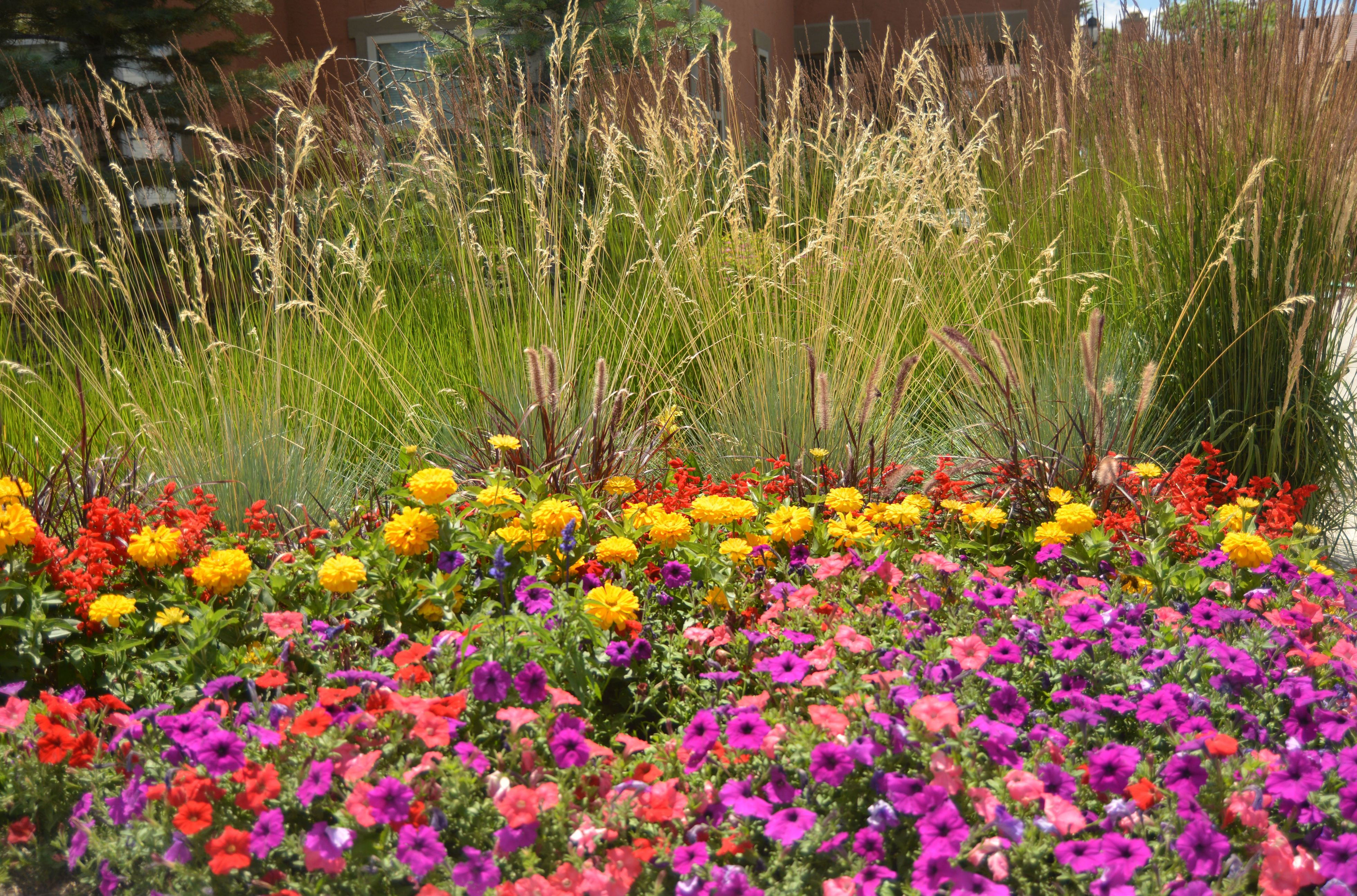 Professional commercial landscaping in colorado springs commercial professional commercial landscaping in colorado springs mightylinksfo
