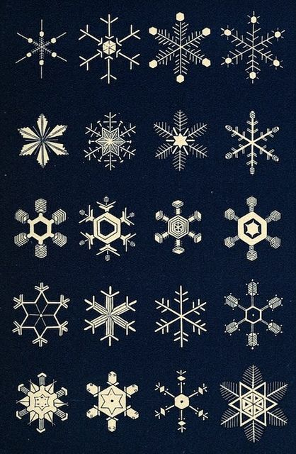The illustrative plates from Snowflakes: a Chapter from the Book of Nature (1863), a collection of poems, extracts, anecdotes and reflections on the theme of snow and the snowflake.