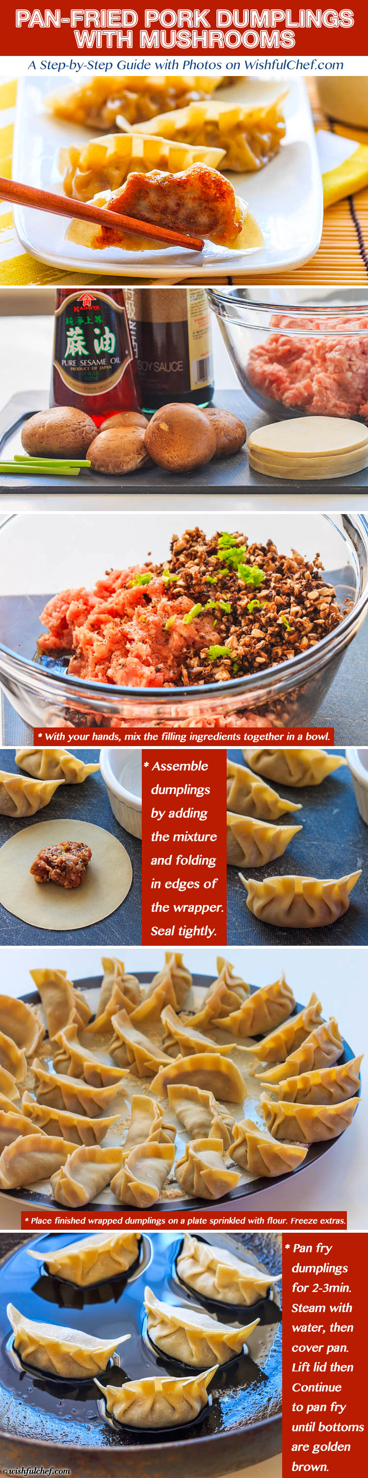 Pan Fried Pork #Dumplings with Mushrooms // wishfulchef.com #ChineseNewYear #Appetizer #Recipes