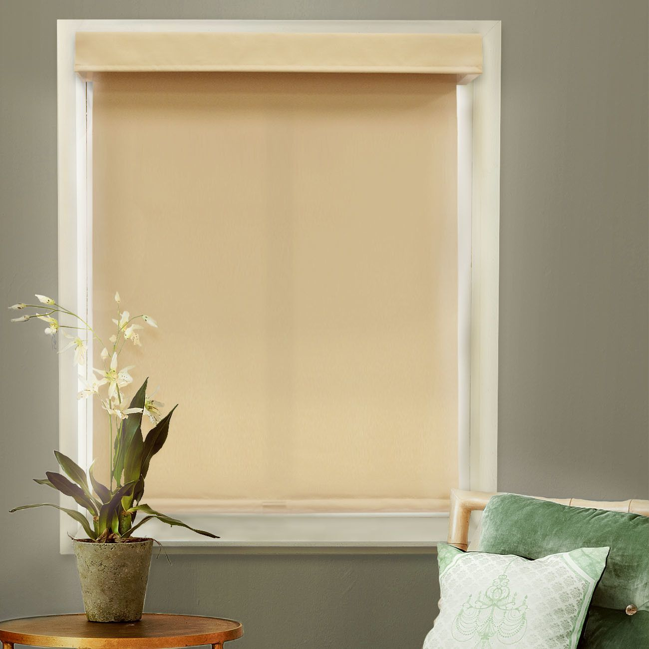 Window privacy ideas  mountain cordless privacy thermal roller shade  products