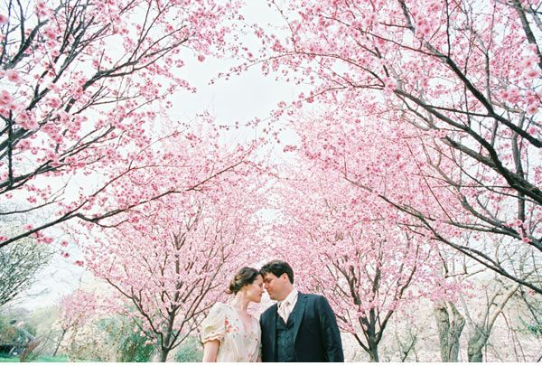 Gasp no need for decor when cherry blossoms are your wedding - cherry blossom animated