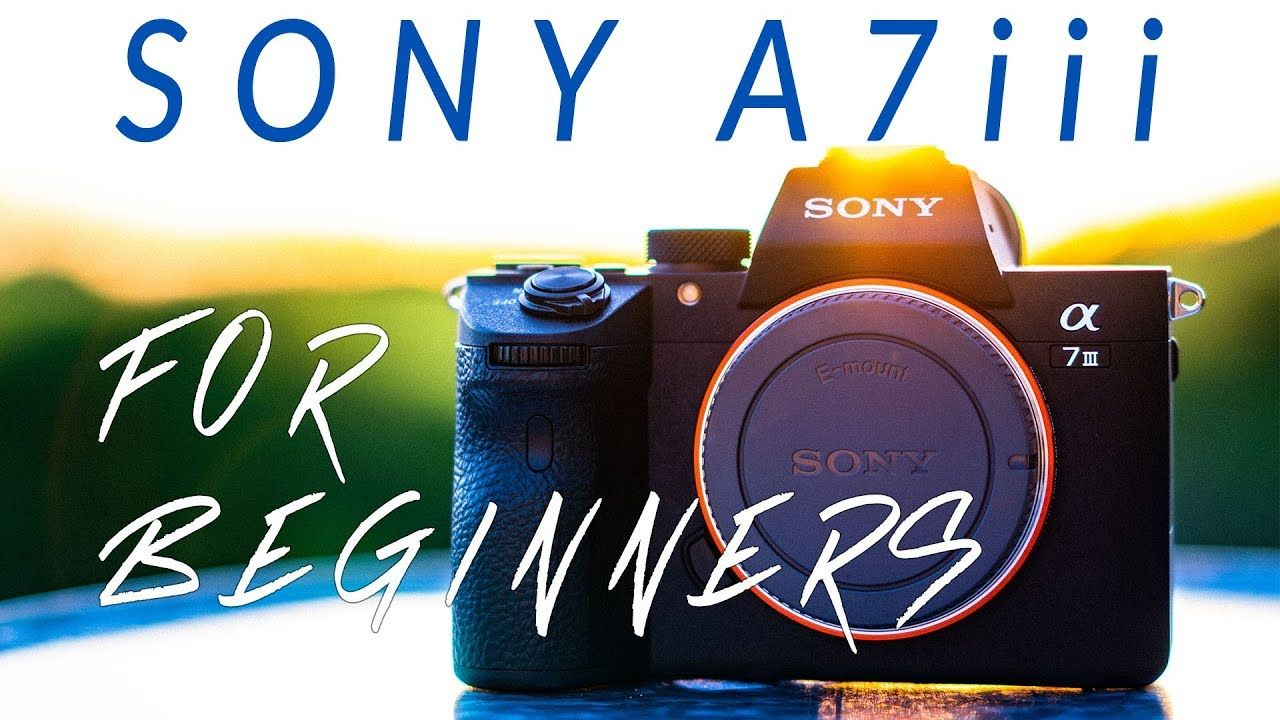 Sony a7iii for Beginners- 3 Reasons to Start with this