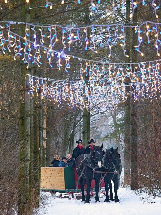 dusk makes sleigh rides at paradise ranch near cedarburg wisconsin enchanting vacation