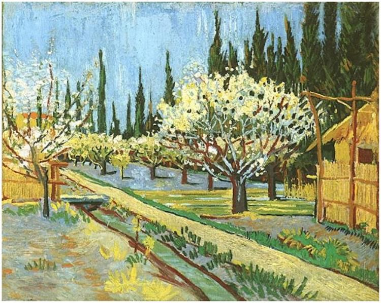 Orchard in Blossom, Bordered by Cypresses Vincent van Gogh   Painting, Oil on Canvas  Arles: April, 1888 Collection Richard J. Bernhard  New York, New York, United States of America, North America  F: ;554, ;JH: ;1388