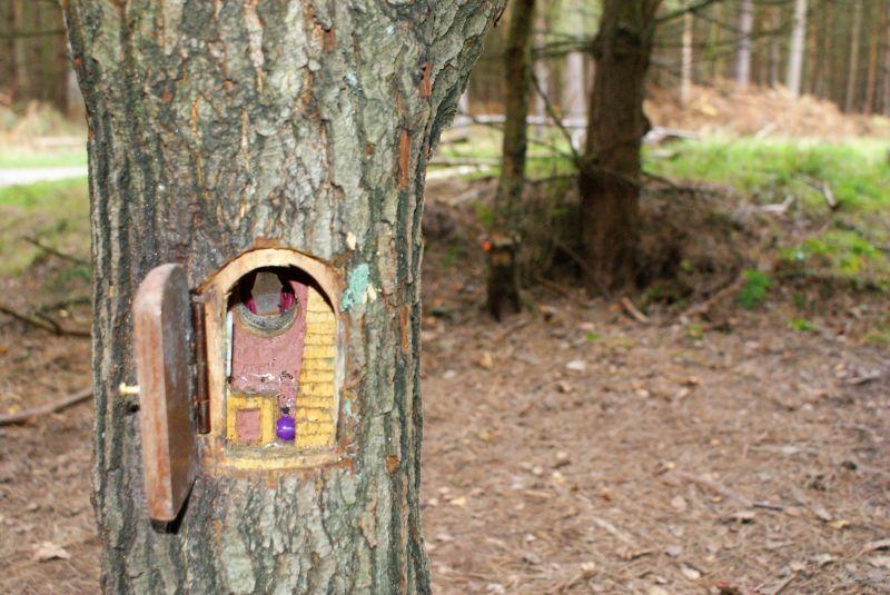 Fairy House Inside A Tree Trunk Fairy Garden Diy Miniature
